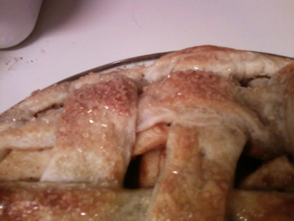 apple pie flaky crust 2