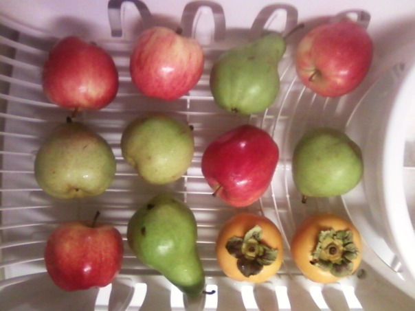 dish rack fruit