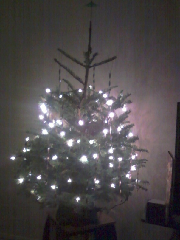 my first tree 2