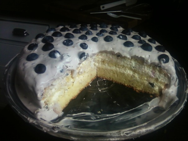 lime blueberry cake cross-section 1