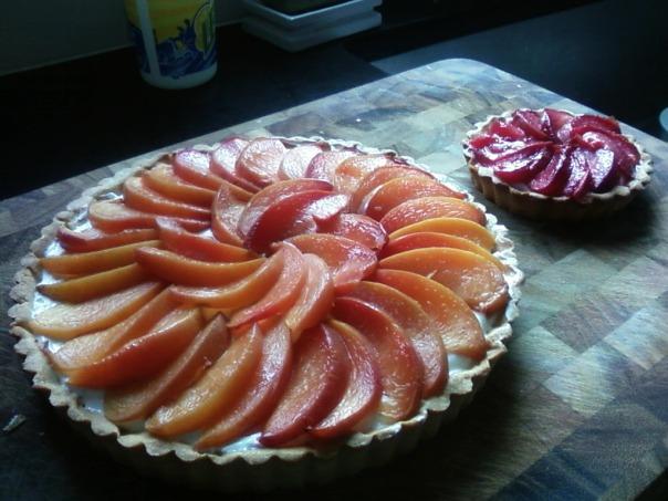 nectarine tart plum tart